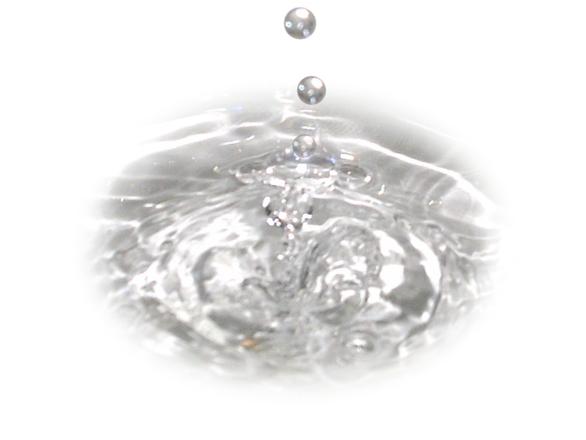 Wasser - unser Lebenselixier